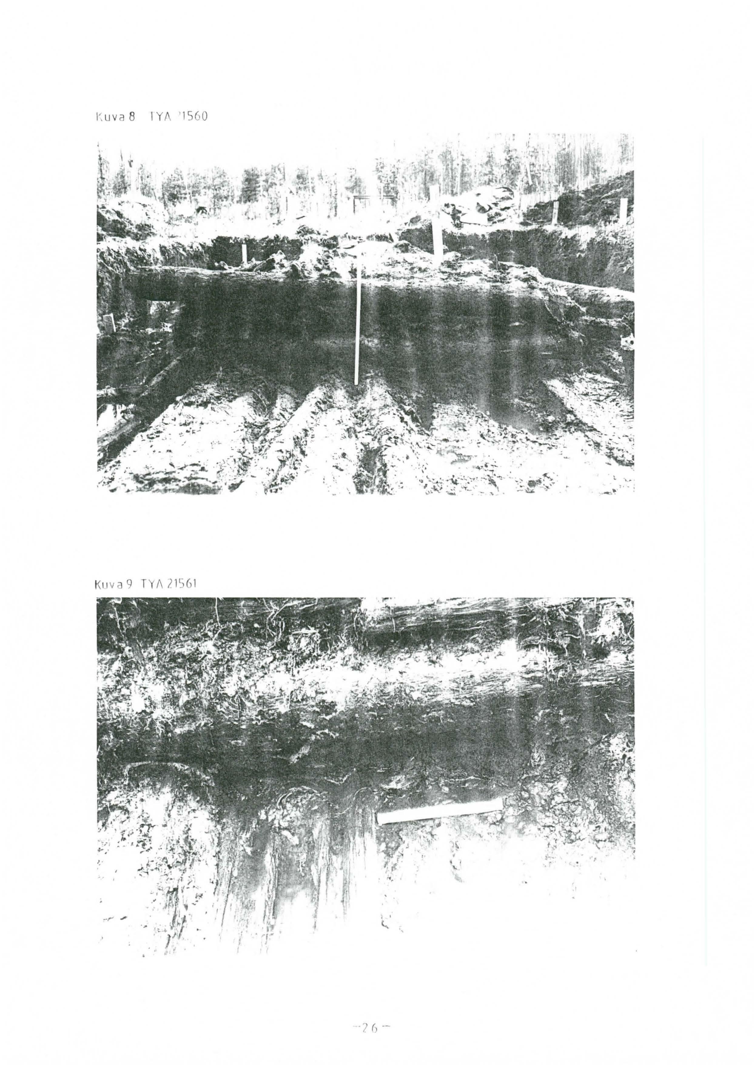 Langbromosan tutkimus-page-027